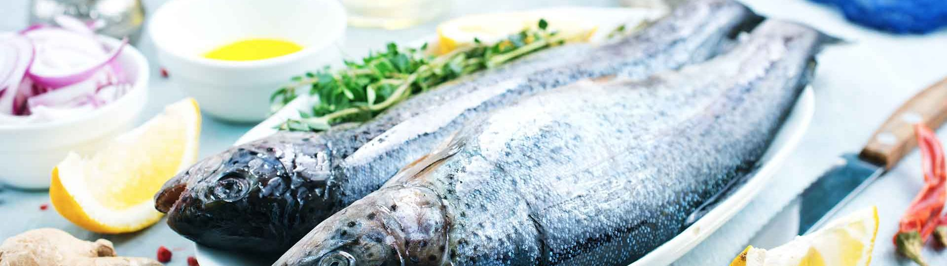 frozen-seafood-suppliers-bangalore